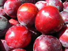 Free Red Plums Stock Photography - 5698612