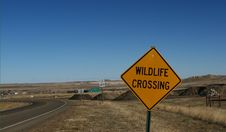 Free Wildlife Crossing Street Sign Stock Image - 5699371