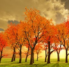 Free Beautiful Autumn Stock Photo - 5699660