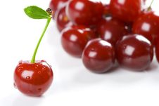 Free Bouquet Of Cherries Royalty Free Stock Images - 5699839