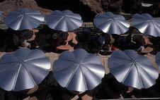 Free Umbrellas Stock Images - 572304