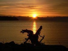 Free The Dragon At Daybreak Stock Photos - 572723