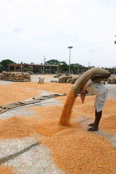 Free Market Yard India Stock Images - 572894