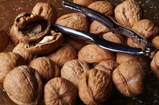 Free Walnuts And A Cracker 4 Royalty Free Stock Images - 578989