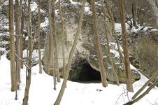 Free Cave And Trees At Winter Royalty Free Stock Photos - 579738