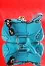 Free Blue Female Bag Royalty Free Stock Photos - 5701648