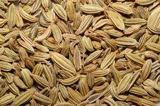Free Fennel Seeds Macro Royalty Free Stock Photos - 5700348