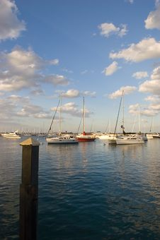 Free Monroe Harbor Stock Photos - 5700493