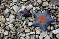 Free Starfish Stock Image - 5701481