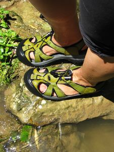 Free Green Wet Sandals Royalty Free Stock Photo - 5701985