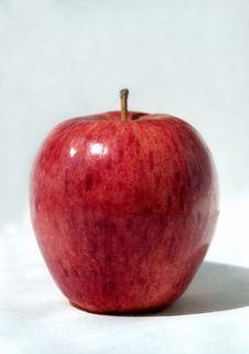 Free Simply Red Apple Stock Photos - 5702163