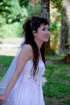 Pretty Asian Girl Stock Image