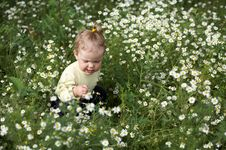 Girl With White Flowers Stock Images