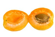 Free Apricot Stock Images - 5704044