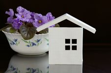House And The Flowers Stock Photo