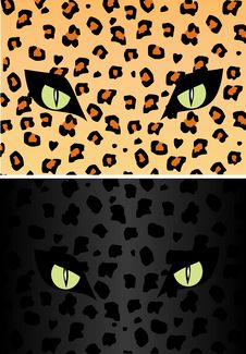 Free Skin And Eye Of The Jaguar Stock Photography - 5705392