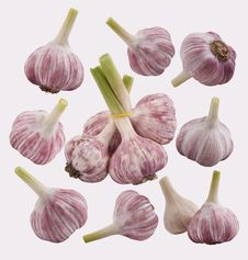 Free Garlic Set Royalty Free Stock Photography - 5707037