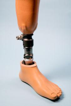 Free Replacement Leg Stock Image - 5707401