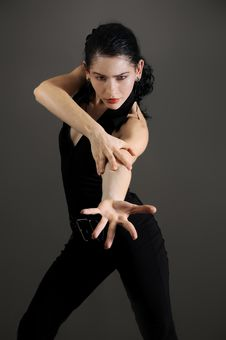 Free Flamenco Dancer Stock Photos - 5708333