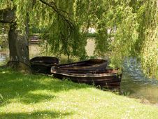 Rowing Boats Under A Tree Royalty Free Stock Photography