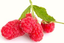 Close-up Of Raspberry Stock Images