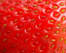 Free Macro Of Strawberry Royalty Free Stock Image - 5709936