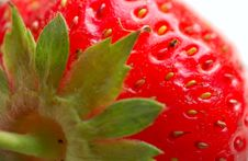 Free Macro Of Strawberry Royalty Free Stock Images - 5709939