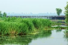 Free Wetland Park Royalty Free Stock Photos - 57090778