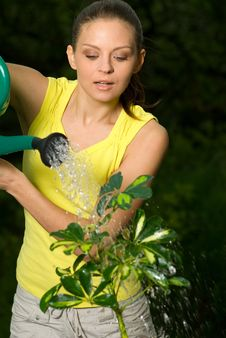 Free Woman Work In Her Garden Royalty Free Stock Images - 5710229