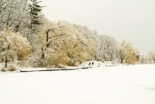 Free Winter Scene In High Park Stock Photography - 5711302