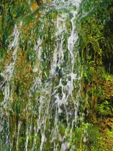 Free Waterfall Details Royalty Free Stock Photos - 5713238
