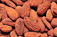 Free Almond Stock Photos - 5713253