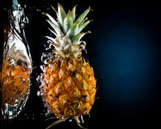 Free Fresh Pineapple In Water Royalty Free Stock Photos - 5713268