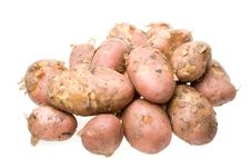 Free Fresh Potato Royalty Free Stock Photo - 5713525