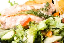 Free Stake From A Salmon With Vegetables Stock Photo - 5713610