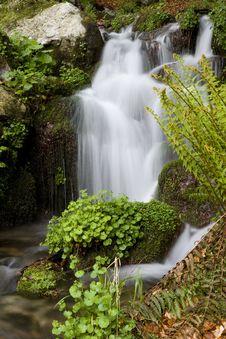 Free Waterfall Stock Photography - 5715912