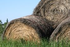 Free Rolled Hay Bales Stock Photos - 5716273