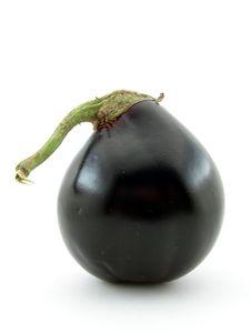Free Eggplant Stock Photo - 5717420