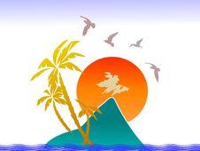 Sunset, Tropical Island, Palms And Birds Stock Photos