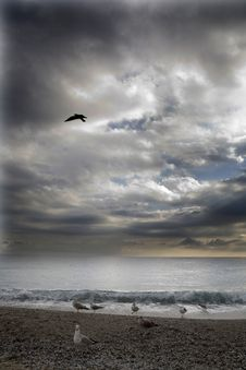 Free Beach And Clouds Royalty Free Stock Images - 5718249