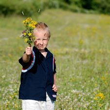 Free Boy With Bouquet Of Flowers Stock Photo - 5718280