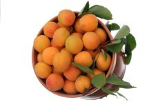 Free Apricots Royalty Free Stock Image - 5719616