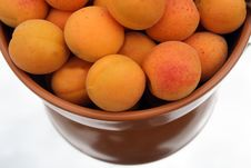 Free Apricots Stock Images - 5719624