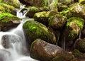 Free Small Falls Stock Photos - 5722383