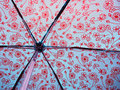 Free Behind A Wet Umbrella Royalty Free Stock Image - 5728366