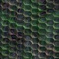 Free Snake Skin Royalty Free Stock Image - 5728496