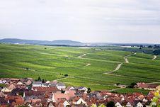 Free Vineyards Near Village Stock Images - 5720524