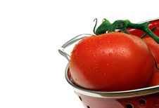 Free Fresh Washed Tomatoes Stock Photo - 5721940