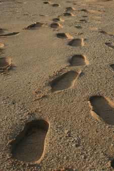 Free Footprints In The Sand Royalty Free Stock Photos - 5722718