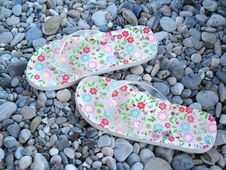 Free Summer Shoes Royalty Free Stock Photo - 5723475